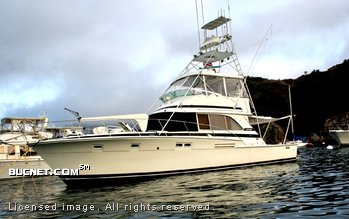BERTRAM YACHT for sale picture - Sport Fisherman