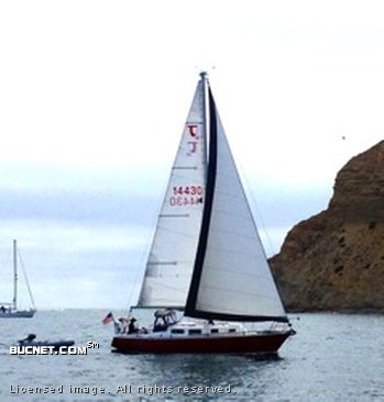 TARTAN YACHT for sale picture - Sail,Racer/Cruiser-Aft Ckpt
