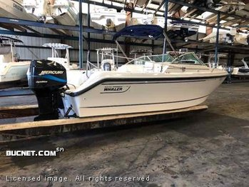 BOSTON WHALER, INC. for sale picture - Bowrider