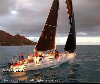 HOBIE CAT for sale picture - Sail,Racer Only-Aft Ckpt