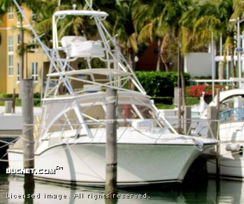 CAROLINA CLASSIC for sale picture - Express Fisherman